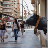 Una vaca se asoma.