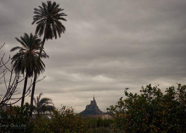 Fotografía de paisaje en la que se ve el castillo de Monteagudo desde Cabezo de Torres, entre palmeras y limoneros.
